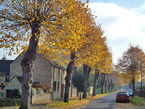 burford-autumn
