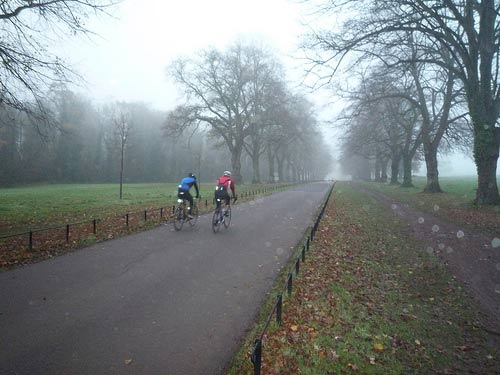 misty-rain