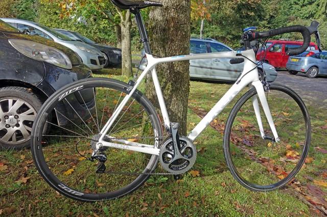 bike-emonda-by-tree