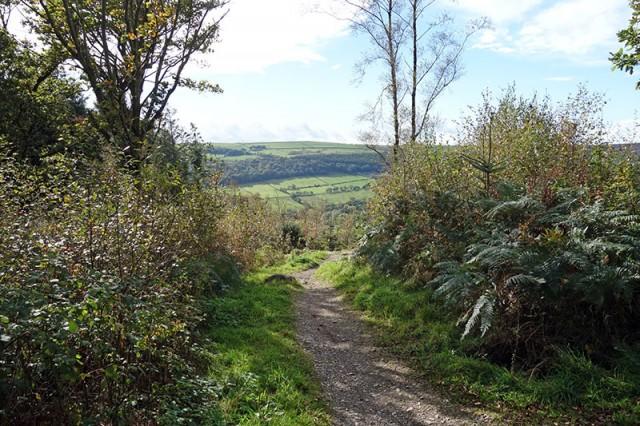 view-path-