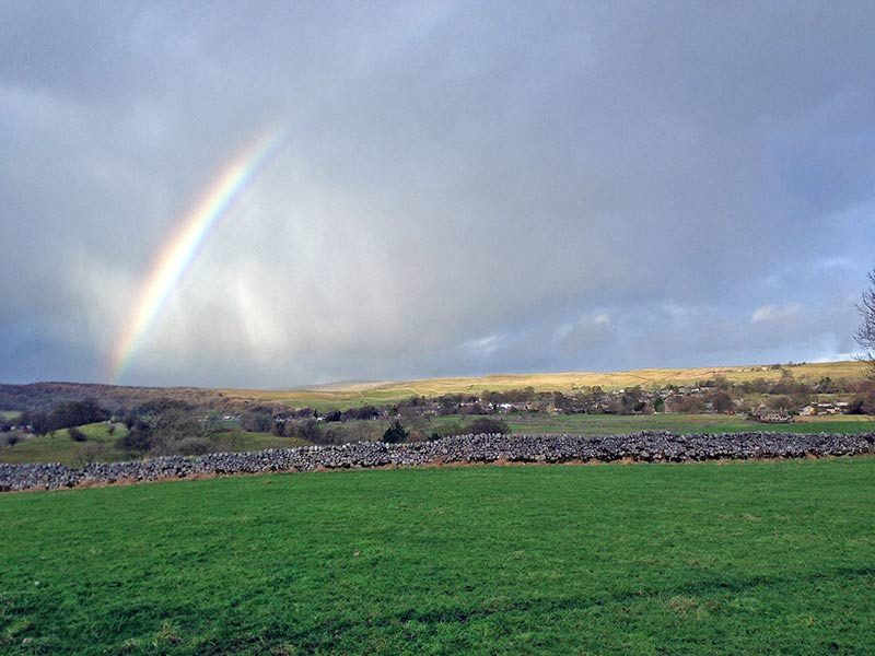rainbow-grassington