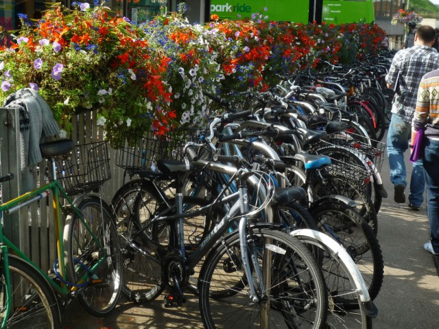 parked-bikes-flowers