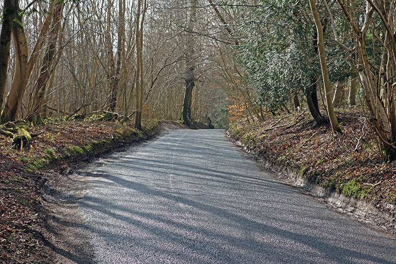 whitedown-lane-2