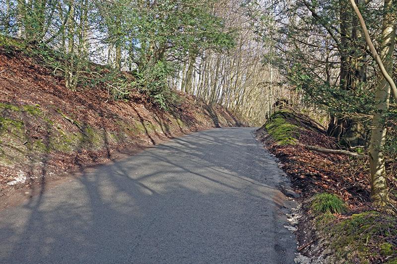 whitedown-lane-3