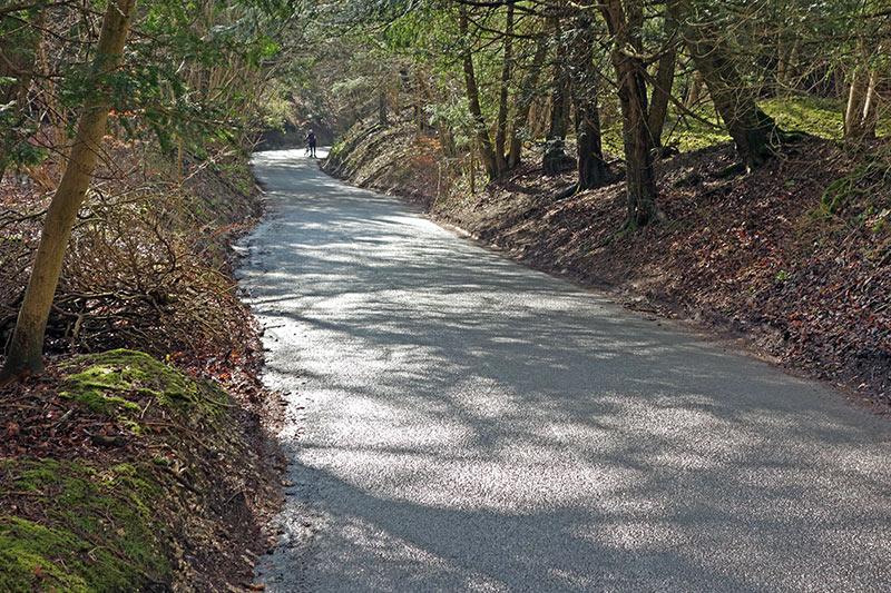 whitedown-lane-4
