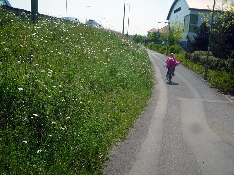 cycle-path-grass-verge-oxford