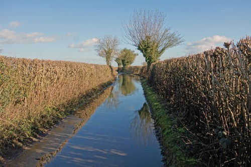 flooded-road