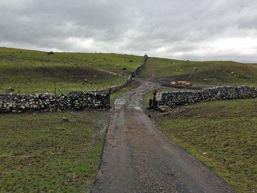 mud-mastiles-lane