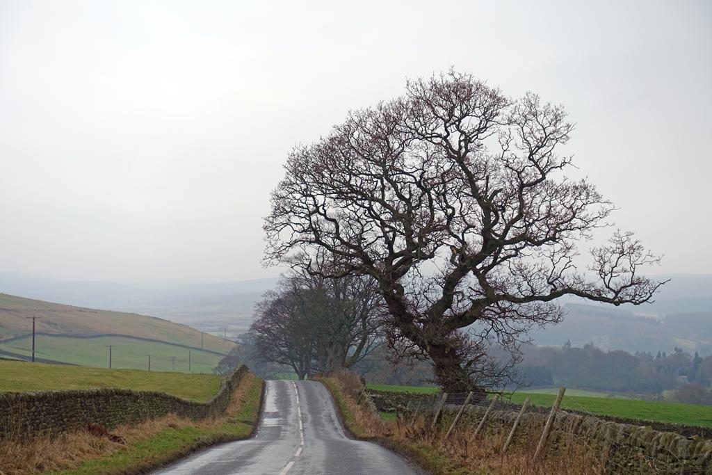 road-to-burnsall-2