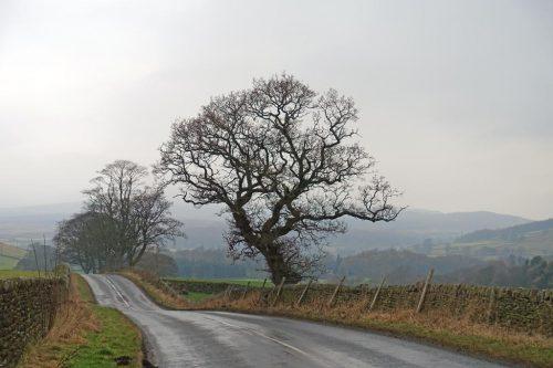 road-to-burnsall
