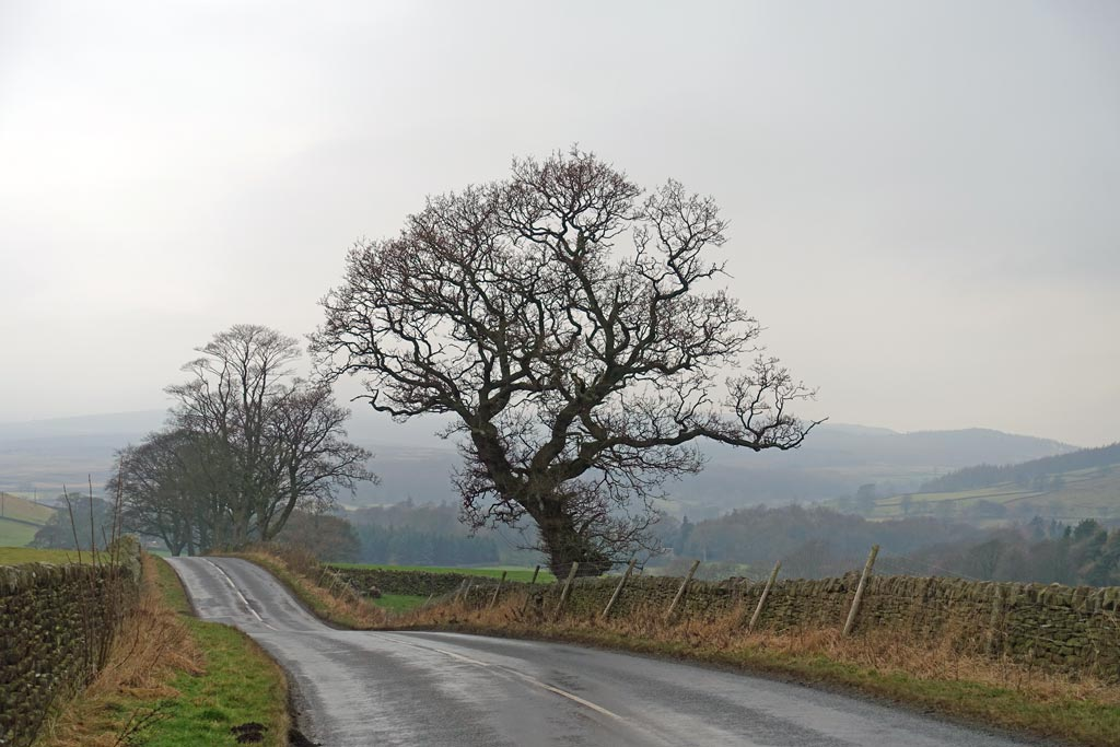 road-to-burnsall